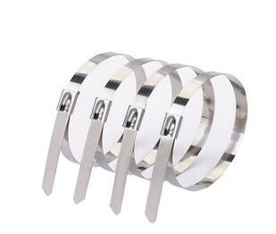 可调不锈钢扎带技术参数和特点